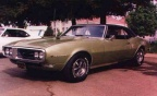 1968 April Gold w Black top Pontiac Firebird 400 H O Coupe